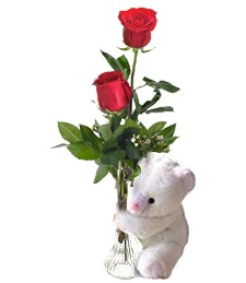 2 Red Love Roses & Bear