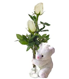 2 White Birthday Roses & Bear