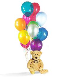 Happy Birthday Teddy Bear and Balloons