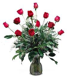 Romantic Evening Starter Kit--Congratulations Roses