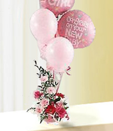 Baby Girl Balloons and Flowers