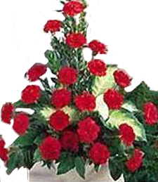 Funeral Basket Carnations