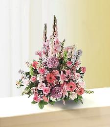 Fabulous Wild Flowers