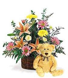 Brimming Spring Basket & Bear