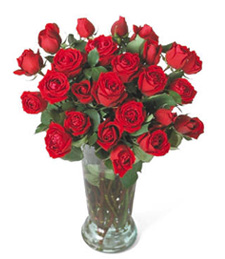 Robustly Red Birthday Roses