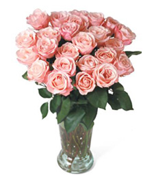 Tickled Pink Get Well Bouquet
