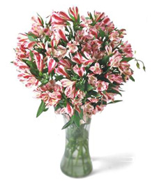 Festive Décor Thinking of You Bouquet