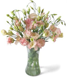 Contemporary Chic Get Well Bouquet