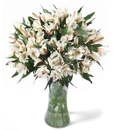 Classy Impressions Thinking of You Bouquet