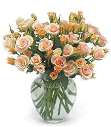 Show-Stopper Get Well Bouquet