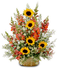 Country Splendor Congratulations Basket