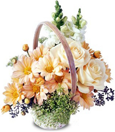 FlowerDelivery.com coupon: Beauty Basket