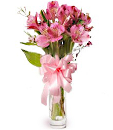 FlowerDelivery.com coupon: Picture of Pink