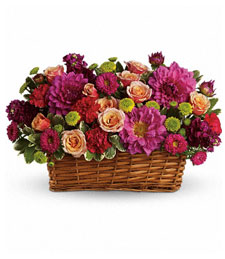 A Flare of Beauty in a Basket