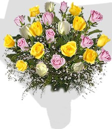 2 Dozen Assorted Roses Bouquet