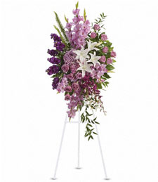 Lavender Elegance Spray