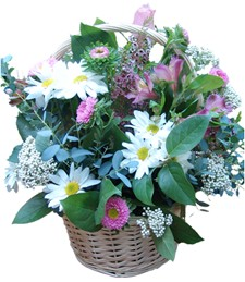 Basket of Wishes
