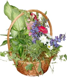 Array of Colors Garden Basket