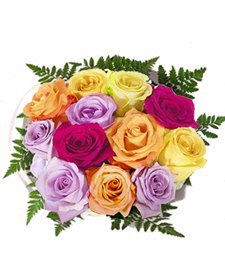 Dozen Rainbow Assorted Roses