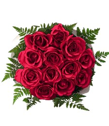 Dozen Red Christmas Roses