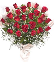 2 Dozen Red Roses Wrapped
