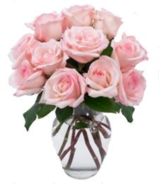 Dozen Pink Roses w/Vase