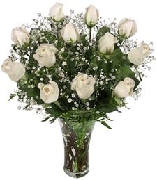 Dozen White Roses w/Vase