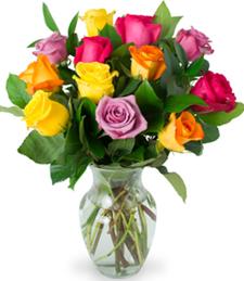 Dozen Rainbow Assorted Roses w/Vase