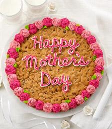 Dwarf Hawaiian Umbrella Tree Bonsai - Good