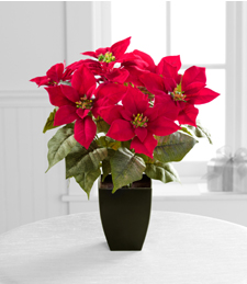 Jane Seymour Silk Botanicals Poinsettia Perfection Holiday Plant - 17-inch