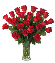 2 Dozen Red Roses with Vase
