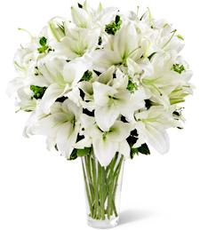 Lilies of Heaven