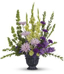 Lavender Awakenings