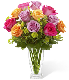 Razzle Dazzle Roses