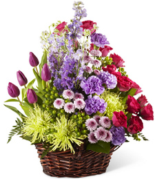 Palettes of Color Sympathy Basket