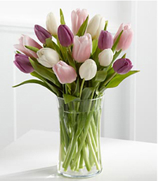 Painted Skies Tulip Bouquet - 15 Stems