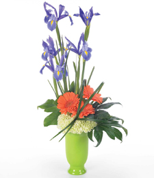 Islands of Iris Mother's Day Bouquet