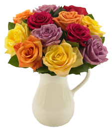 A Rainbow of Roses