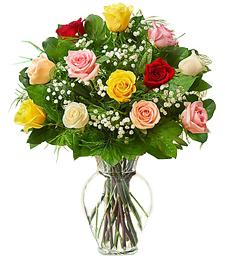 Assorted Bloom