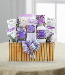 Fields of Lavender - Good