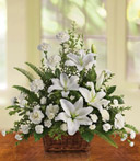 White Lillies of Peace Basket
