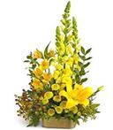 Yellow Dish Arrangement