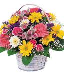 Glorious Birthday Blooms