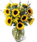 Endless Sunflowers Bouquet