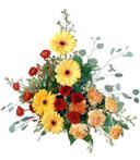 Prismatic Petals Arrangement