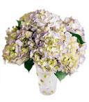 Spring Lovelies Bouquet