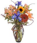 Rainbow Wonder Bouquet