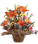 Rainbow Blooms Basket