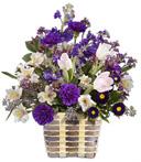 Near & Dear Birthday Basket