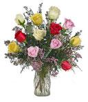 One-Dozen Assorted Roses